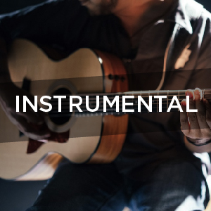 Instrumental Artists For Hire Central Coast